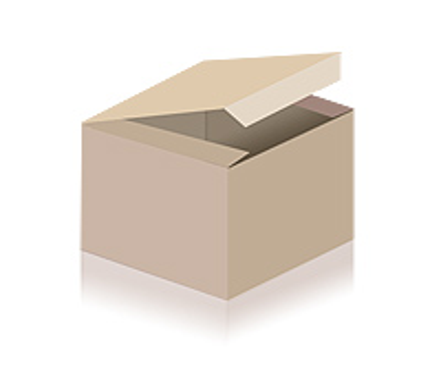 H. Utendoerffer, Nürnberg Flobert in original Blechdose