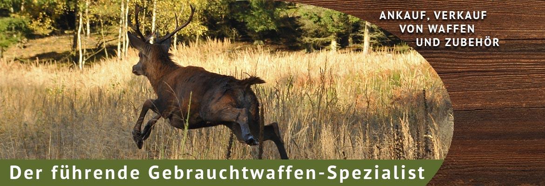 Banner-Hirsch-Ankauf